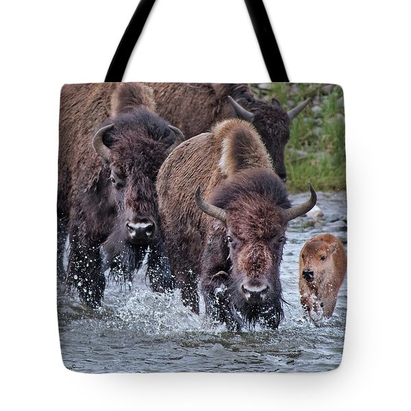 Splashing In The Lamar River Tote Bag