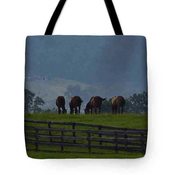 Splender Beyond Tote Bag