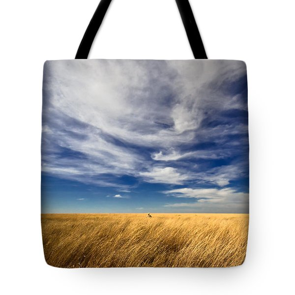 Splendid Isolation Tote Bag