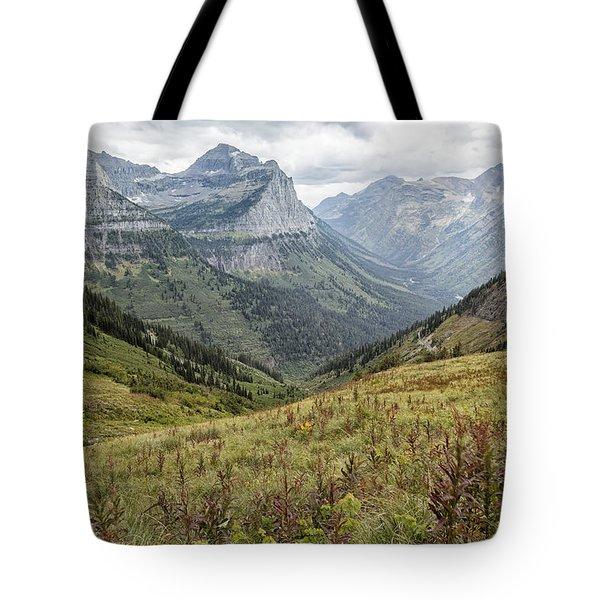 Splendor From Highline Trail - Glacier Tote Bag