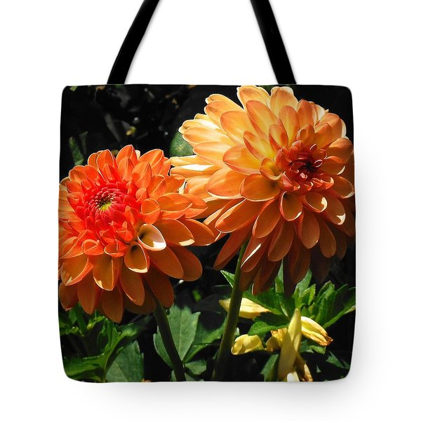 Splendor Of Fall Dahlias  Tote Bag