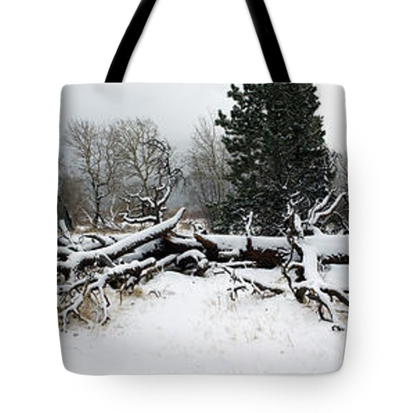 Tote Bag featuring the photograph Split Personality - Panorama by Shane Bechler