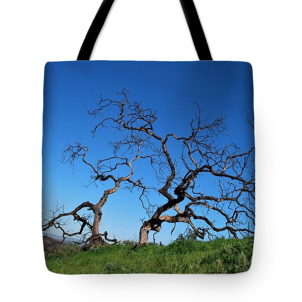 Split Single Tree On Hillside Tote Bag