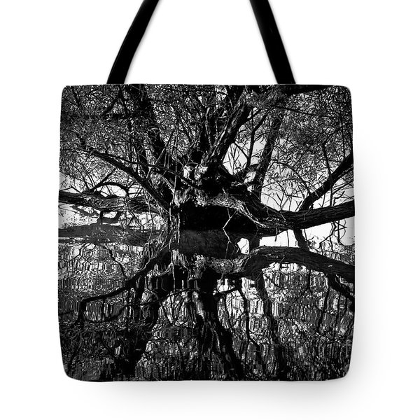 Tote Bag featuring the photograph Spooky by Douglas Stucky