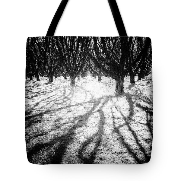 Spooky Forest Tote Bag
