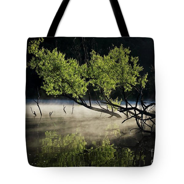 Tote Bag featuring the photograph Spooky Two by Douglas Stucky