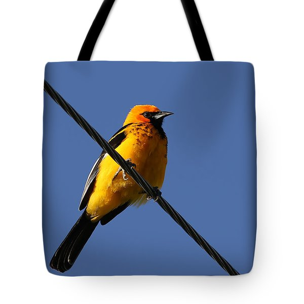 Spot Breasted Oriole Tote Bag