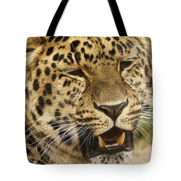 Tote Bag featuring the photograph Spot by Gary Bridger