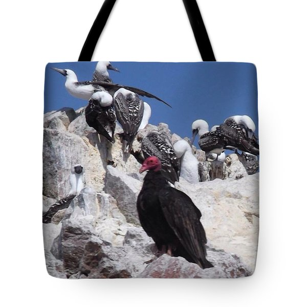 Turkey Vulture Tote Bag