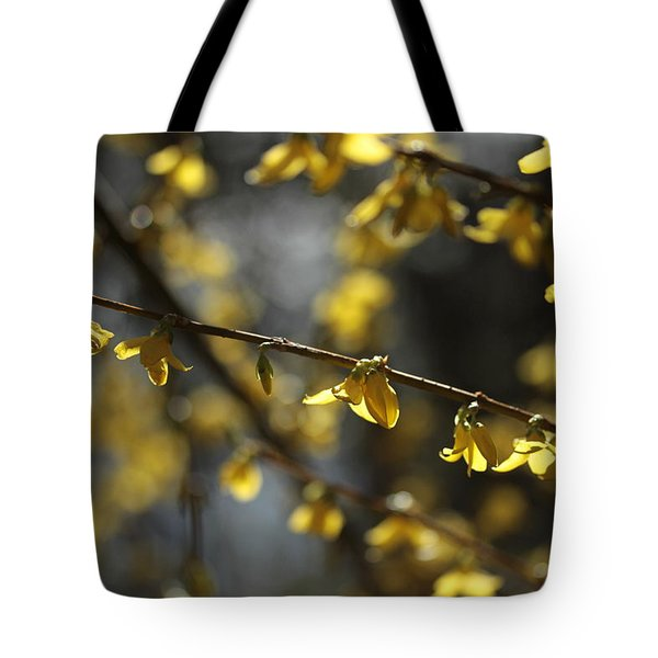 Tote Bag featuring the photograph Spotlights  by Connie Handscomb