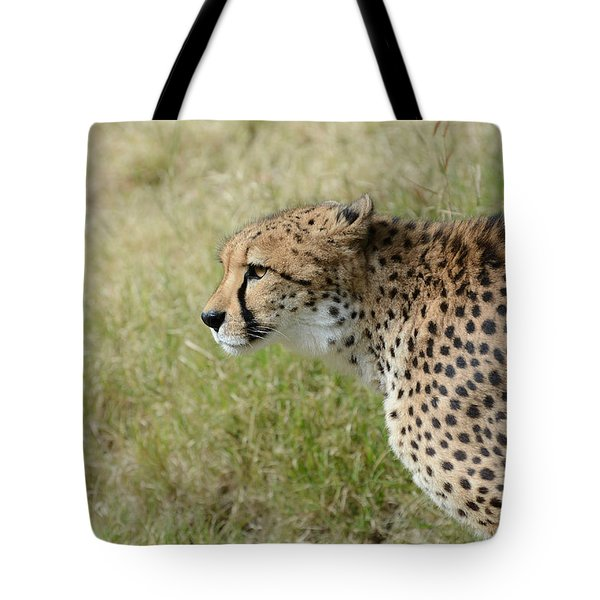 Tote Bag featuring the photograph Spotted Beauty 3 by Fraida Gutovich