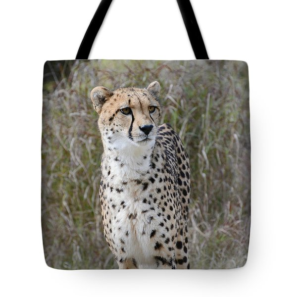 Tote Bag featuring the photograph Spotted Beauty by Fraida Gutovich