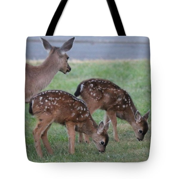 Spotted Fawns  Tote Bag by Christy Pooschke