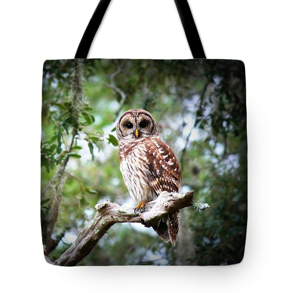Spotted Owl II Tote Bag