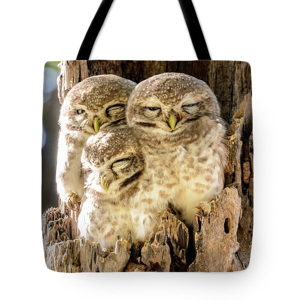 Spotted Owlets Tote Bag