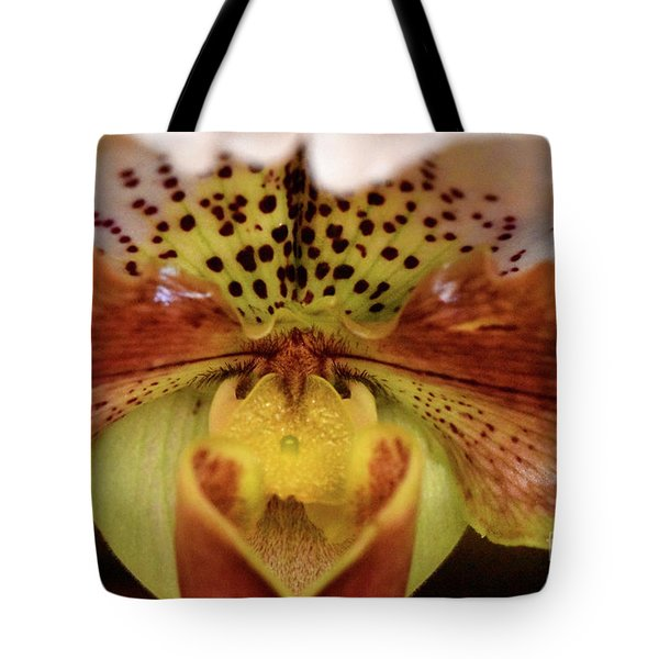 Spotted Paphiopedilum Orchid 2  Tote Bag
