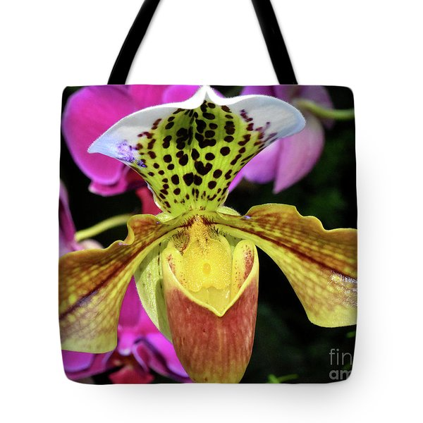Spotted Paphiopedilum Orchid  Tote Bag