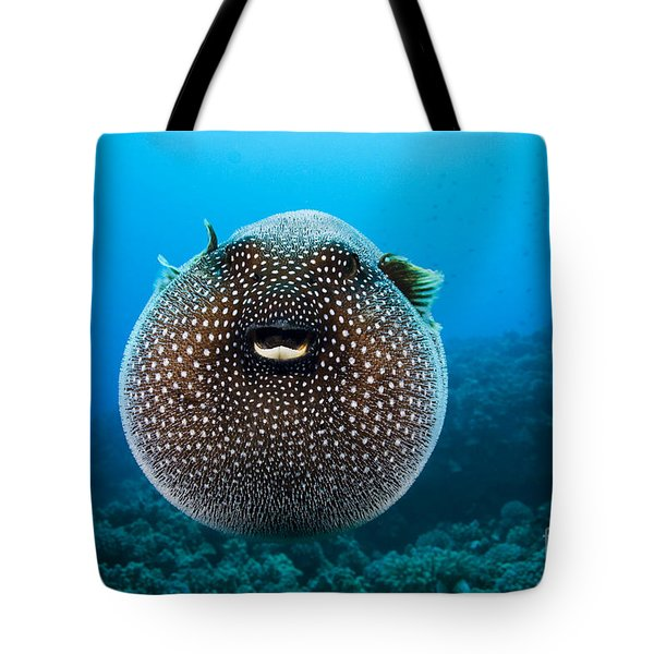 Spotted Pufferfish Tote Bag by Dave Fleetham - Printscapes