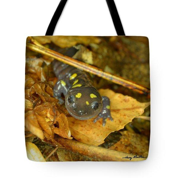 Spotted Salamander Tote Bag