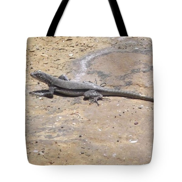Lizard Basking In The Sun Tote Bag