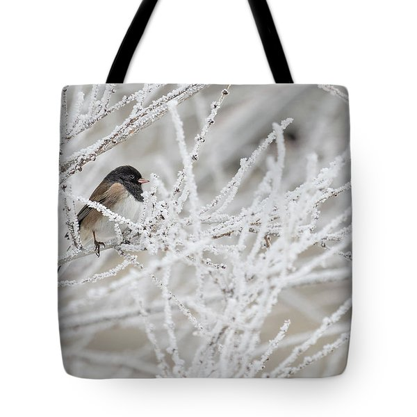 Spotted Towhee In Winter Tote Bag