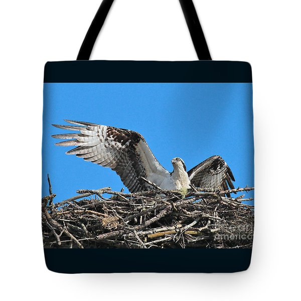 Tote Bag featuring the photograph Spread-winged Osprey  by Debbie Stahre