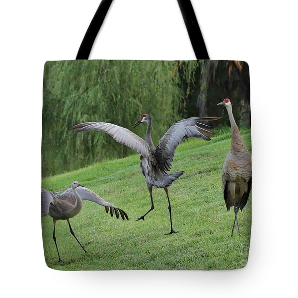 Spread Your Wings Tote Bag by Carol Groenen