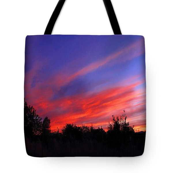 Tote Bag featuring the photograph Spreading The Joy by Joyce Dickens