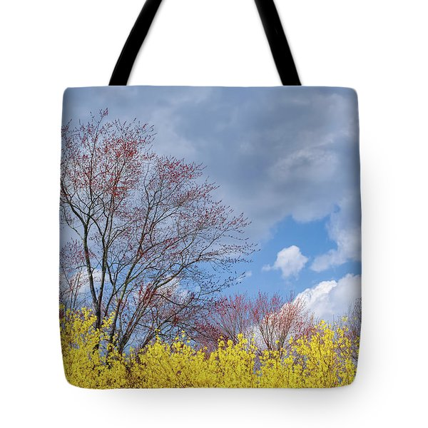 Tote Bag featuring the photograph Spring 2017 by Bill Wakeley
