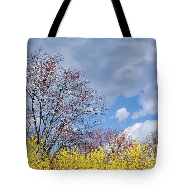 Tote Bag featuring the photograph Spring 2017 Square by Bill Wakeley