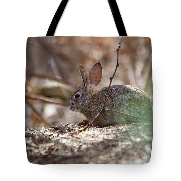 Spring Tote Bag by Afrodita Ellerman