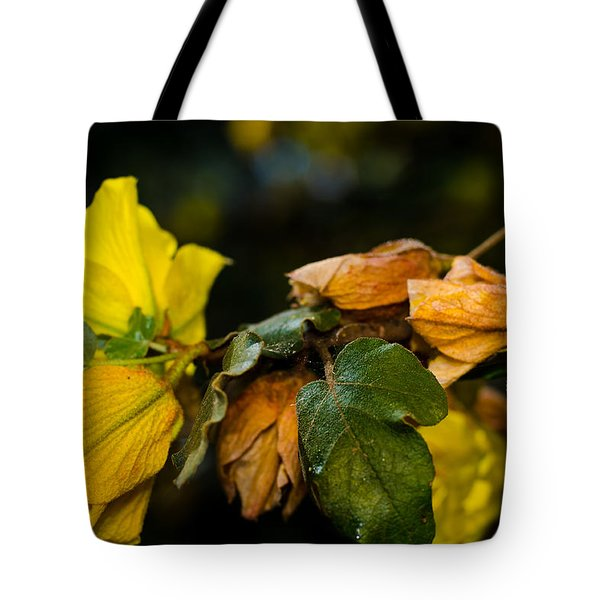 Spring Almost Gone Tote Bag