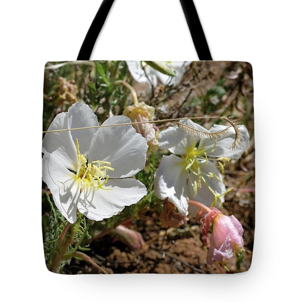Spring At Last Tote Bag