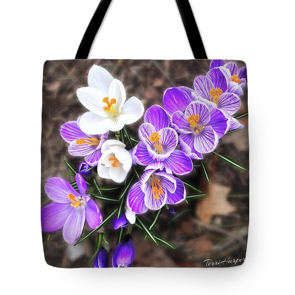 Tote Bag featuring the photograph Spring Beauties by Terri Harper