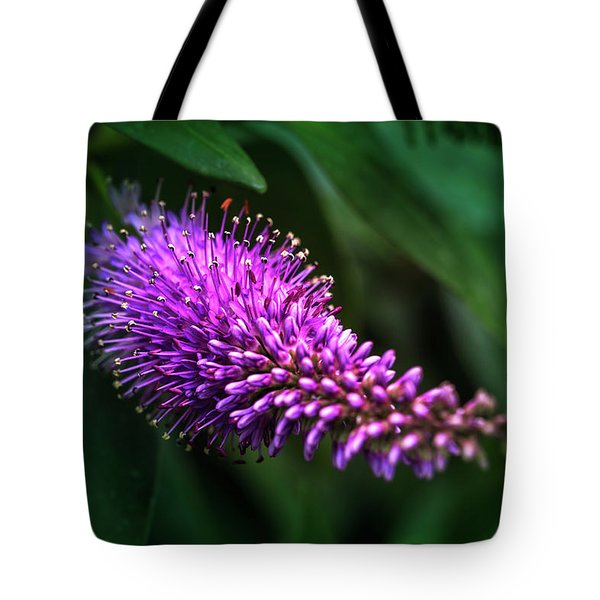 spring beautiful flowers callistemon in subtropics of Russia Tote Bag