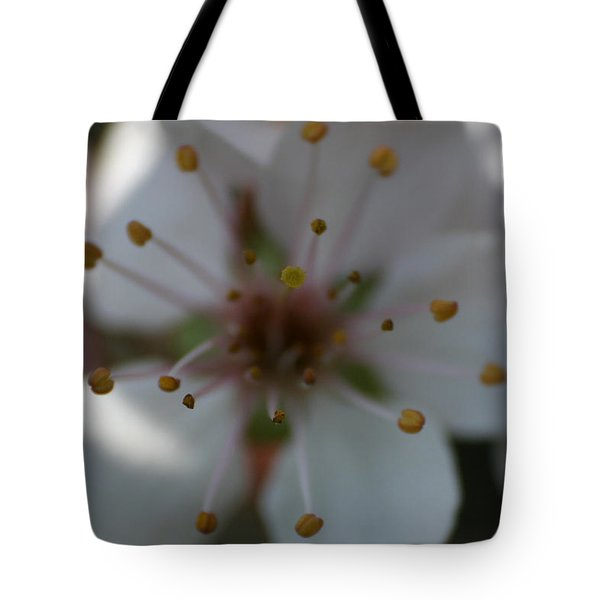 Tote Bag featuring the photograph Spring Beauty Macro 1 by Dylan Punke