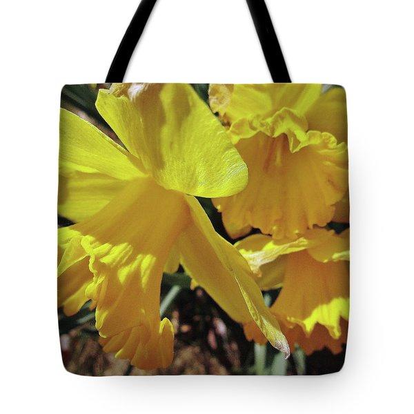 Spring Bloom # 2 Tote Bag