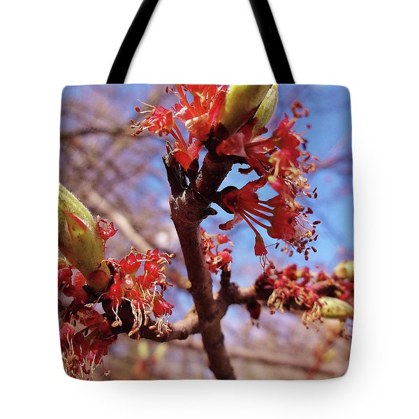 Spring Bloom #1 Tote Bag