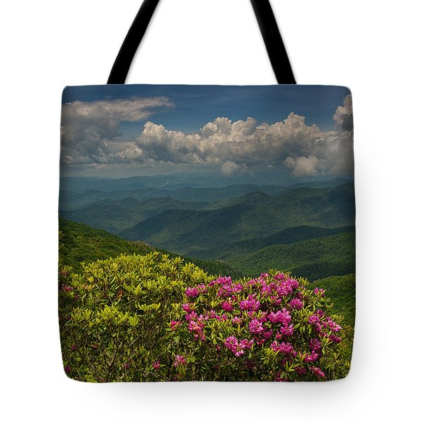 Spring Blooms On The Blue Ridge Parkway Tote Bag