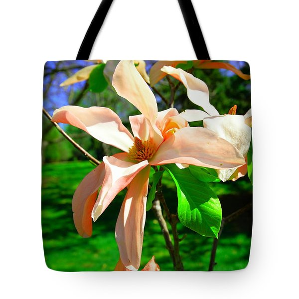 Tote Bag featuring the photograph Spring Blossom Open Wide by Jeff Swan