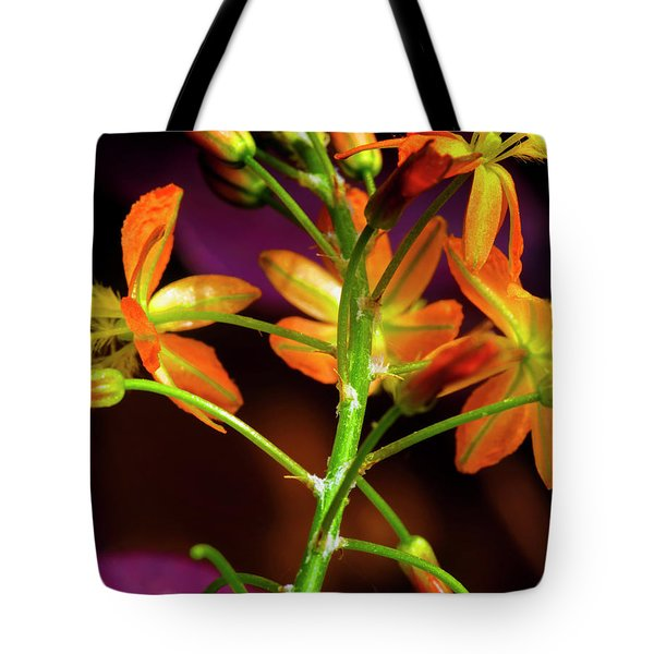 Spring Blossoms 3 Tote Bag by Stephen Anderson