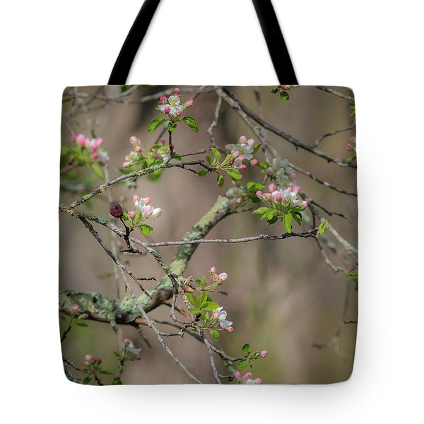 Spring Blossoms 2 Tote Bag
