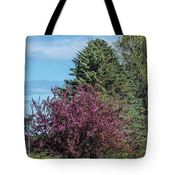 Tote Bag featuring the photograph Spring Blossoms by Paul Freidlund