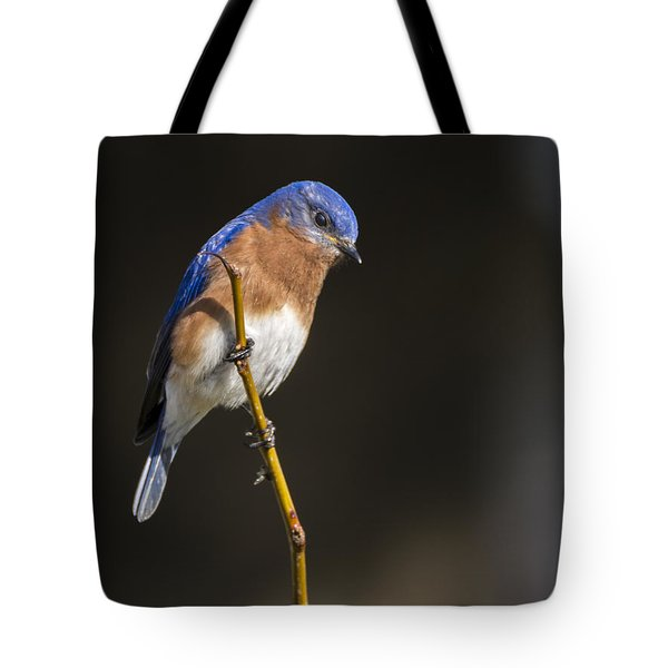 Spring Bluebird Tote Bag