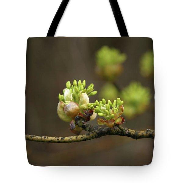 Spring Buds 9365 H_2 Tote Bag