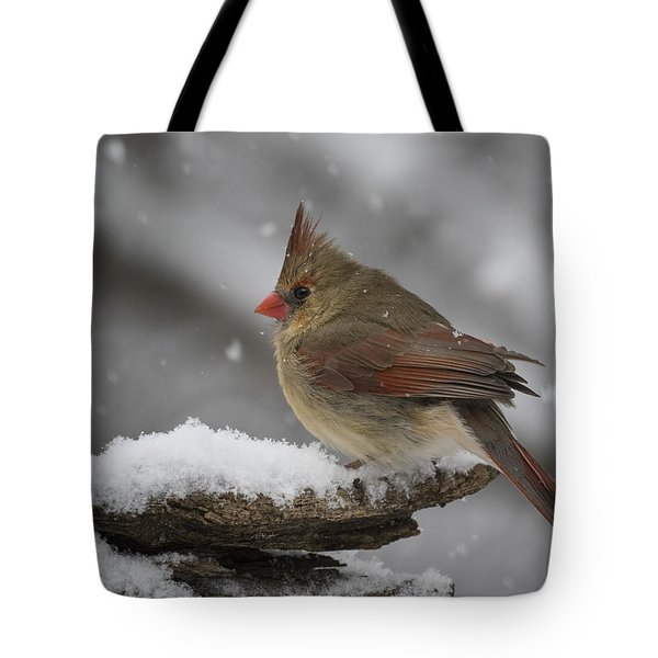 Spring Can't Come Too Soon. Tote Bag
