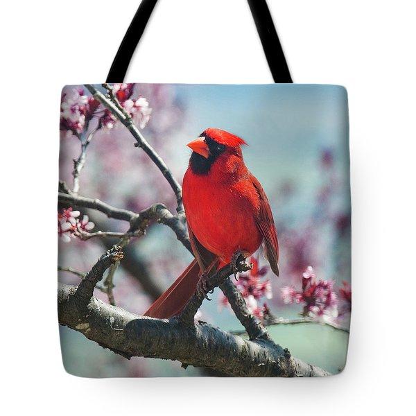 Spring Cardinal 1 Tote Bag