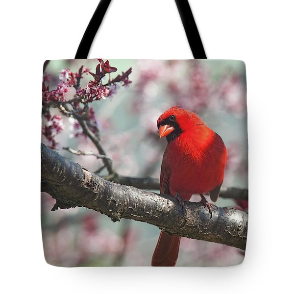 Spring Cardinal 2 Horizontal Crop Tote Bag