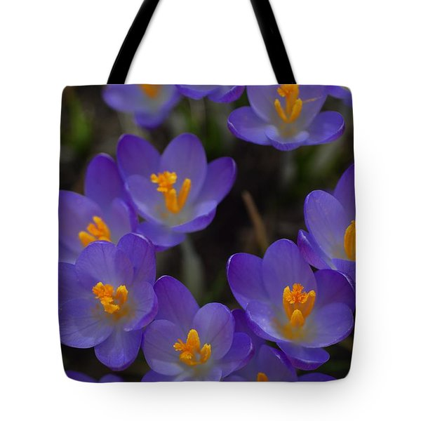 Spring Charmers Tote Bag by Tim Good