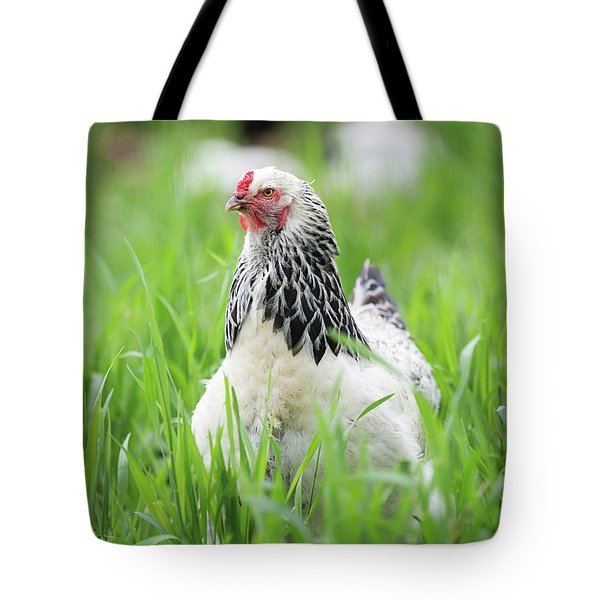 Spring Checken Tote Bag